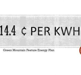 Green Mountain Energy Company Review